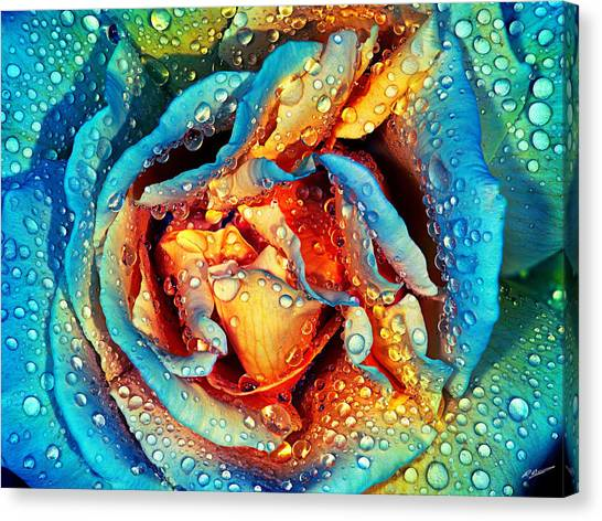 Rose Revisited Canvas Print