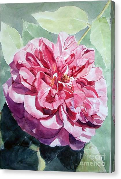 Watercolor Of A Pink Rose In Full Bloom Dedicated To Van Gogh Canvas Print