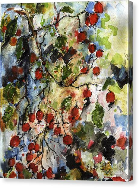 Rosehips By Ginette Watercolor And Ink Canvas Print