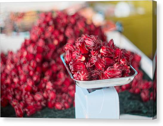 Canvas Print - Roselle Fruit by Jared Shomo