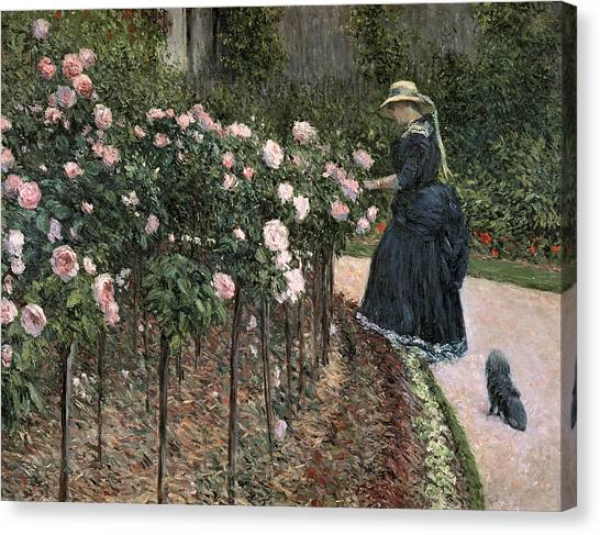 Jardin Canvas Print - Roses In The Garden At Petit Gennevilliers by Gustave Caillebotte