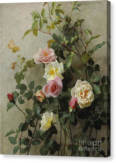 Rose In Bloom Canvas Print - Roses On A Wall by George Cochran Lambdin