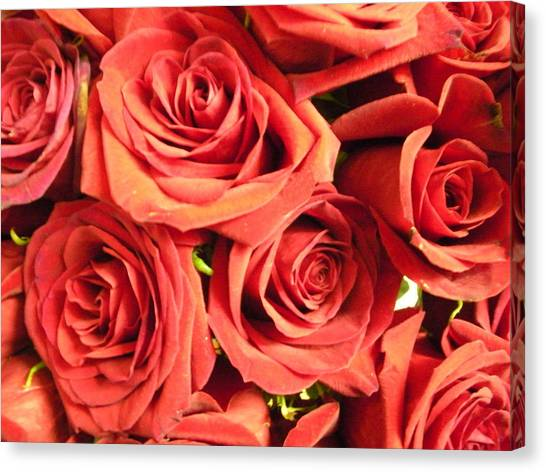 Roses On Your Wall Canvas Print