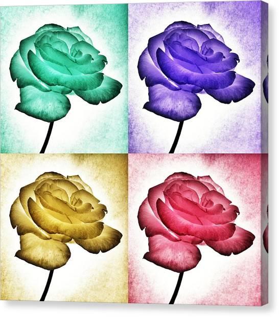Roses - Pop Art Canvas Print