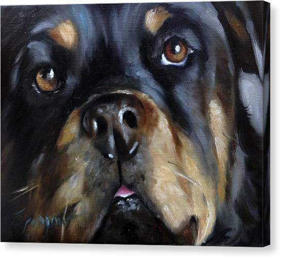 Rottweilers Canvas Print - Rottie by Mary Sparrow