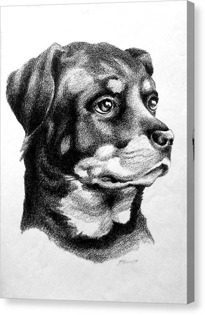 Rottweiler Devotion Canvas Print by Patricia Howitt
