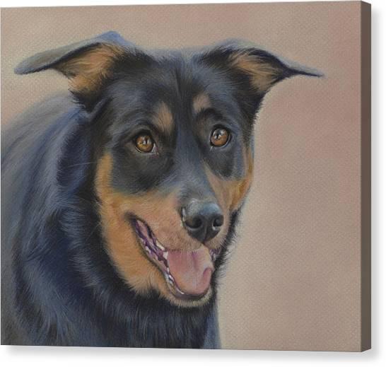 Rottweilers Canvas Print - Rottweiler - Drawing by Natasha Denger
