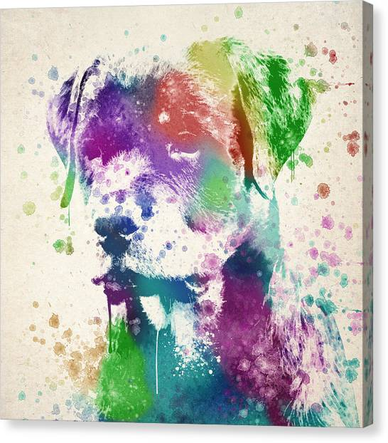 Rottweilers Canvas Print - Rottweiler Splash by Aged Pixel