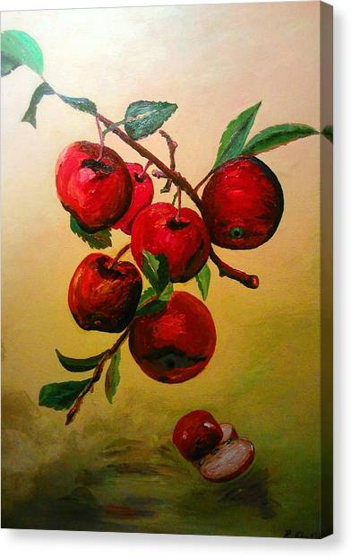 Canvas Print featuring the painting Rough Apples by Ray Khalife