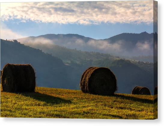 Round Bales And Foggy Hills Canvas Print