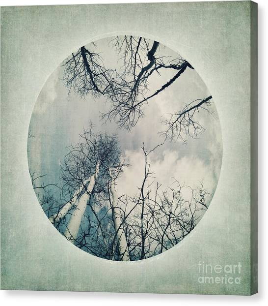 Serie A Canvas Print - round treetops II by Priska Wettstein