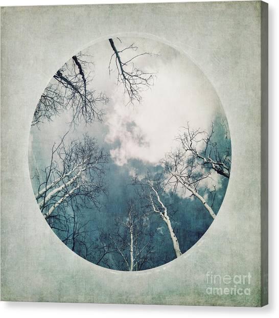 Serie A Canvas Print - round treetops III by Priska Wettstein