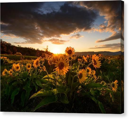 Rowena Crest Sunset Canvas Print