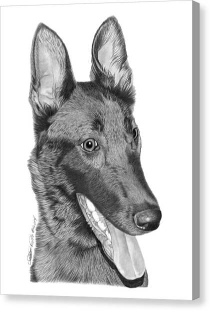 Roxy - 028 Canvas Print