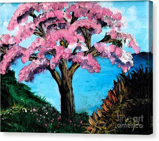 Royal Pink Poinciana Tree Canvas Print