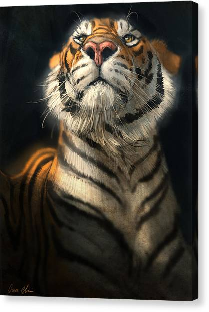 Tiger Canvas Print - Royalty by Aaron Blaise