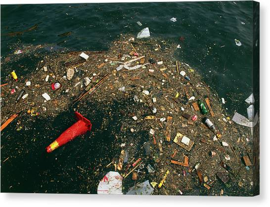 Rubbish Floating On A River Canvas Print by Tony Craddock/science Photo Library