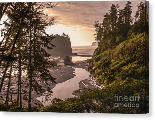 Ruby Beach Landscape Canvas Print