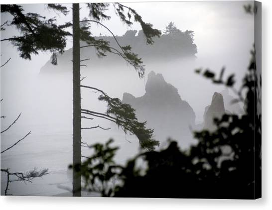 Ruby Beach Washington State Canvas Print