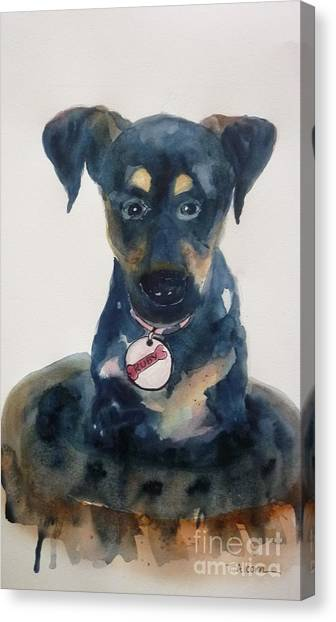 Ruby - Original Sold Canvas Print