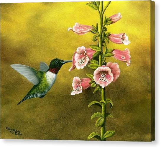 Foxglove Flowers Canvas Print - Ruby Throated Hummingbird And Foxglove by Rick Bainbridge
