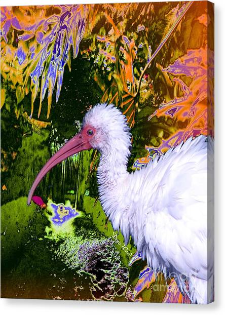 Ruffled Feathers Canvas Print by Doris Wood