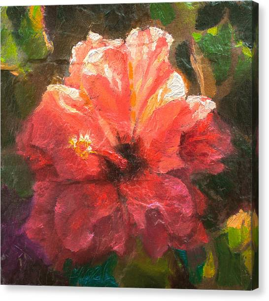 Ruffled Light Double Hibiscus Flower Canvas Print