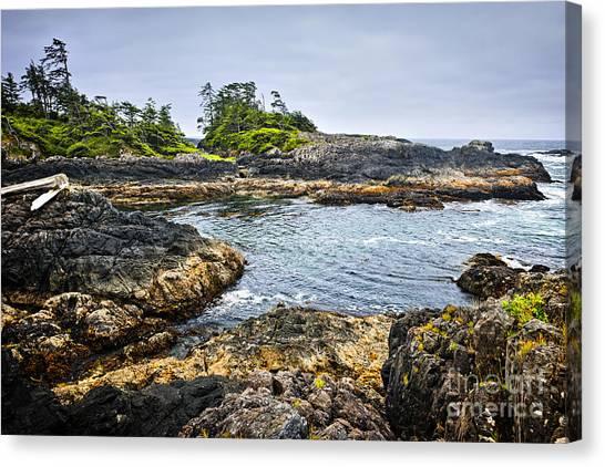 Vancouver Island Canvas Print - Rugged Coast Of Pacific Ocean On Vancouver Island by Elena Elisseeva