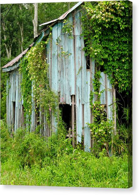 Ruin In The Woods Canvas Print