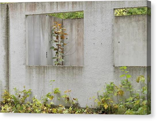Ruins Of A Building, Prefabricated Concrete Unit Of A House, Recaptured By Nature, Mecklenburg-western Pomerania, Germany Canvas Print by Frederik