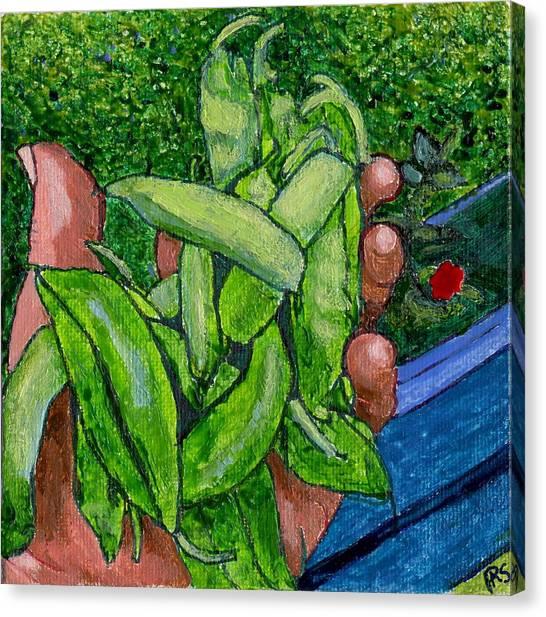 Rummenie's Snap Peas Canvas Print