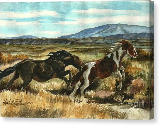 Run Little Horse Canvas Print
