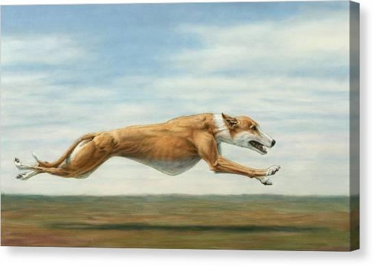 Dog Running Canvas Print - Running Free by James W Johnson