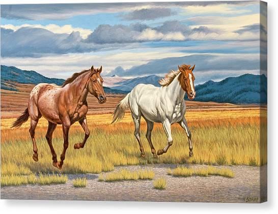 Montana Canvas Print - Running Free by Paul Krapf