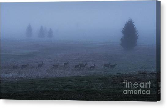 Running In The Mist Canvas Print