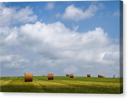 Rural America - A View From Kansas Country Roads Canvas Print