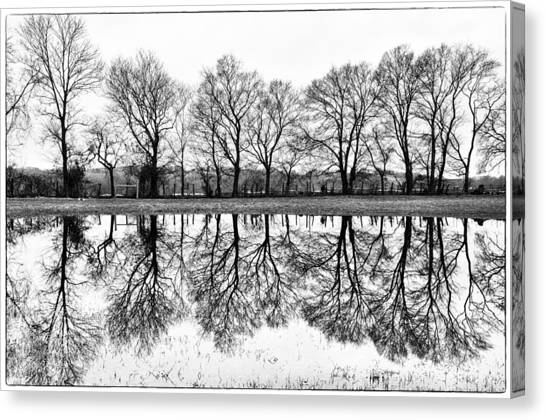 Rural Reflections Canvas Print by Ron Plasencia