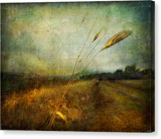 Ruralscape #19. The Victory Of Silence Canvas Print by Alfredo Gonzalez