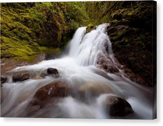Rushing Cascades Canvas Print
