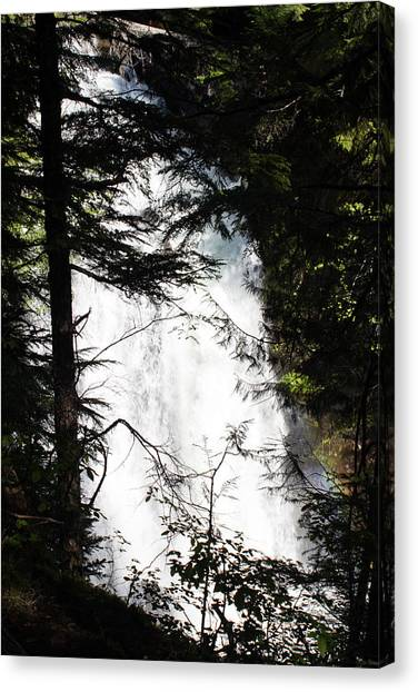 Rushing Through The Trees Canvas Print