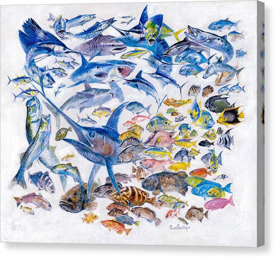 Tiger Sharks Canvas Print - Russ Smiley Gamefish Collage by Carey Chen