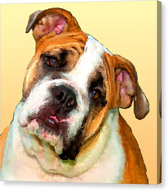 English Bull Dogs Canvas Print - Russell by Tammy Berk