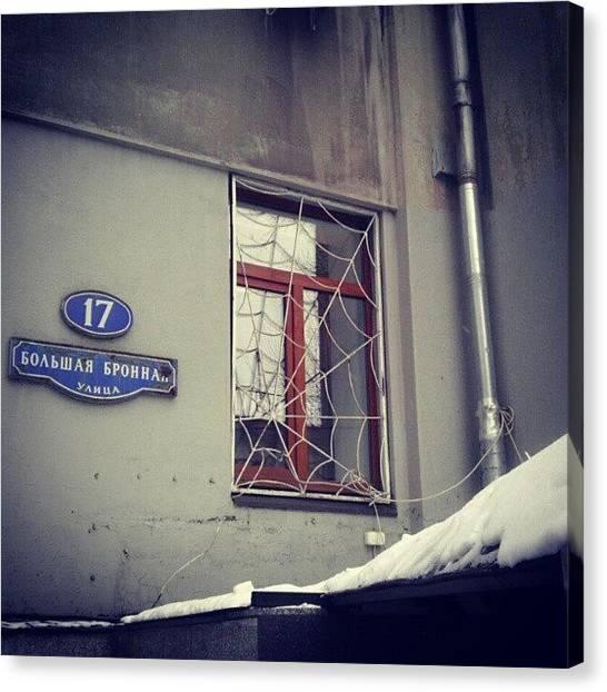 Spider Web Canvas Print - #russia #moscow #msk #street #porusski by Tatyana Radygina