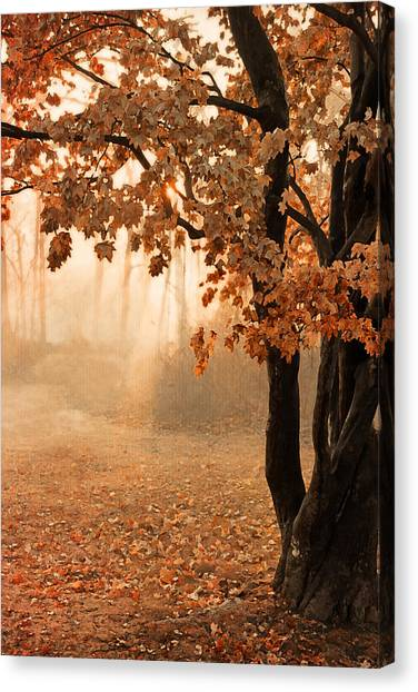Rust Apricot Orange Maple Autumn Sunrise Canvas Print