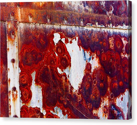 Rusted Metal Canvas Print by Craig Brown