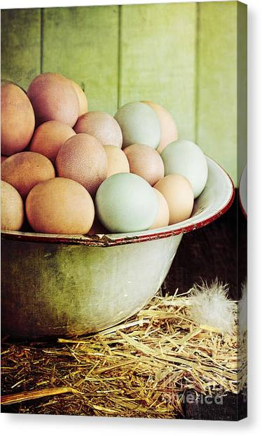 Rustic Farm Raised Eggs Canvas Print