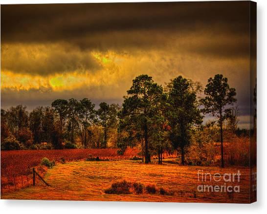 Rustic Pasture Canvas Print