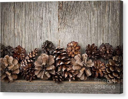 Pine Cones Canvas Print - Rustic Wood With Pine Cones by Elena Elisseeva