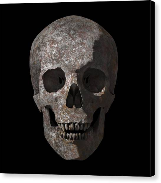 Skulls Canvas Print - Rusty Old Skull by Vitaliy Gladkiy