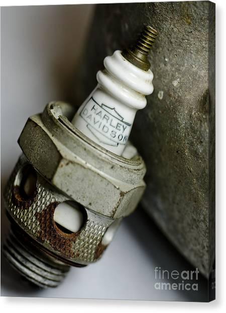 Rusty Old Spark Plug  5  Canvas Print by Wilma  Birdwell